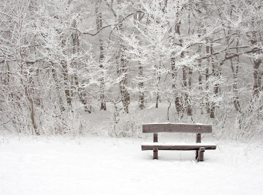 paisaje navidad responsable