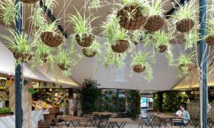 decoracion sostenible el huerto de Lucas